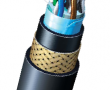 600V_Signal_Cable_with_Overall_Shield